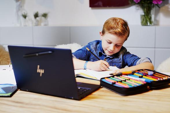 Homeschooling per Internet